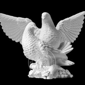 Пара голубей №11